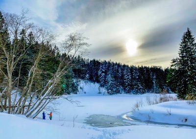 Stausee-Winter